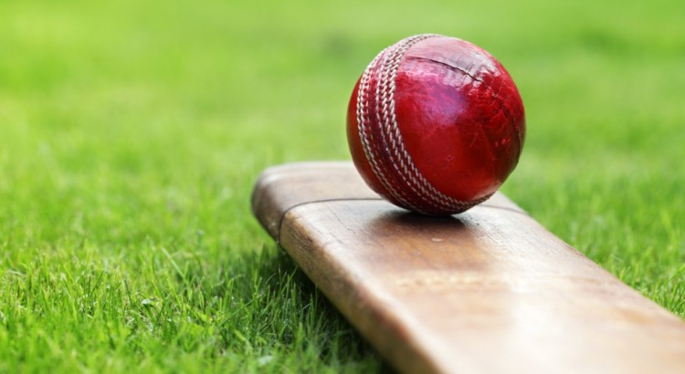 Cricket – Youphoria – Corporate Outbound Training | One day outings